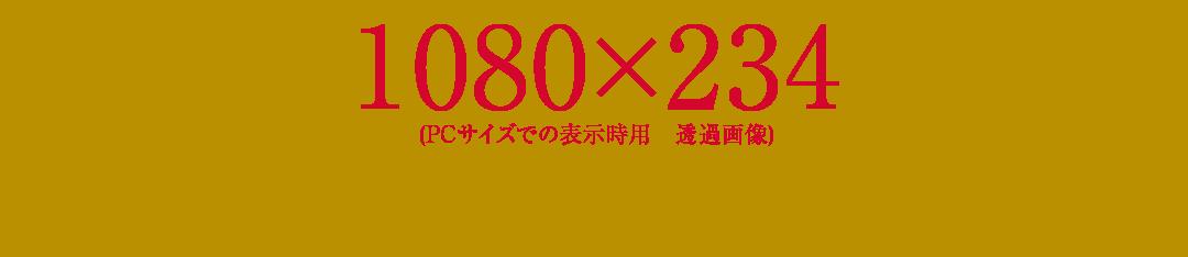 1080-234-demo01
