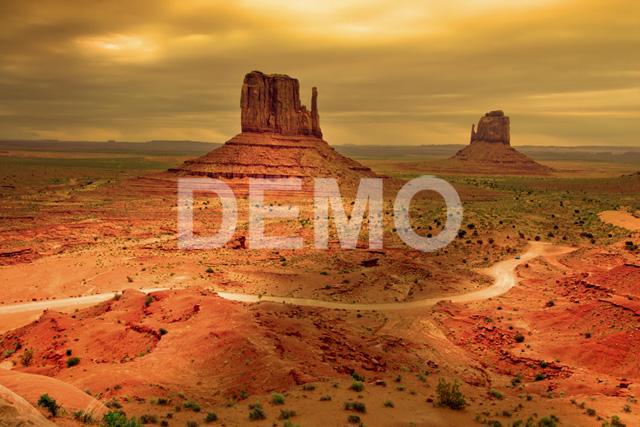 demo-scene007