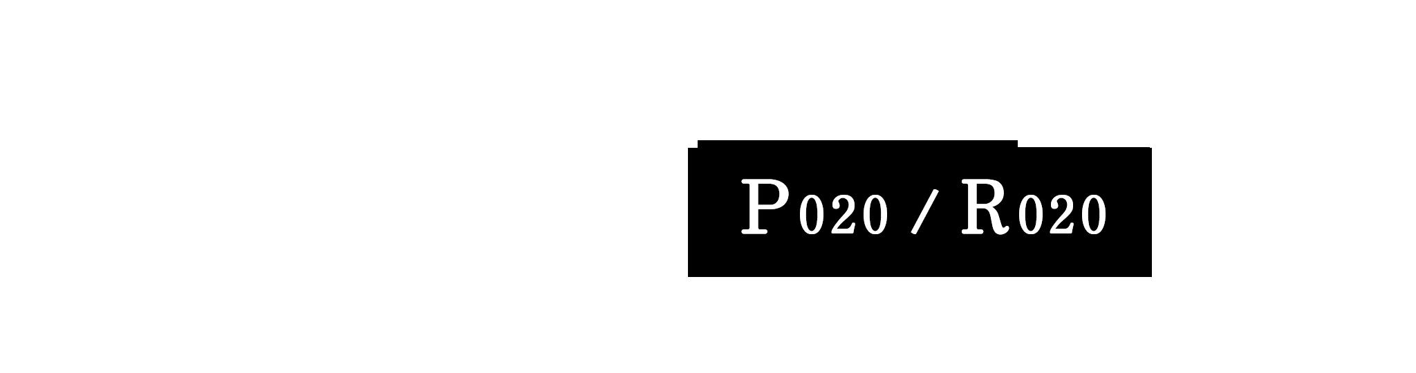 p020-r020-top-tabsp